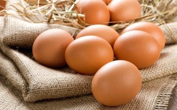 Yumurta: Protein kaynağıdır. Anne sütünden sonra ikinci önemli besindir.